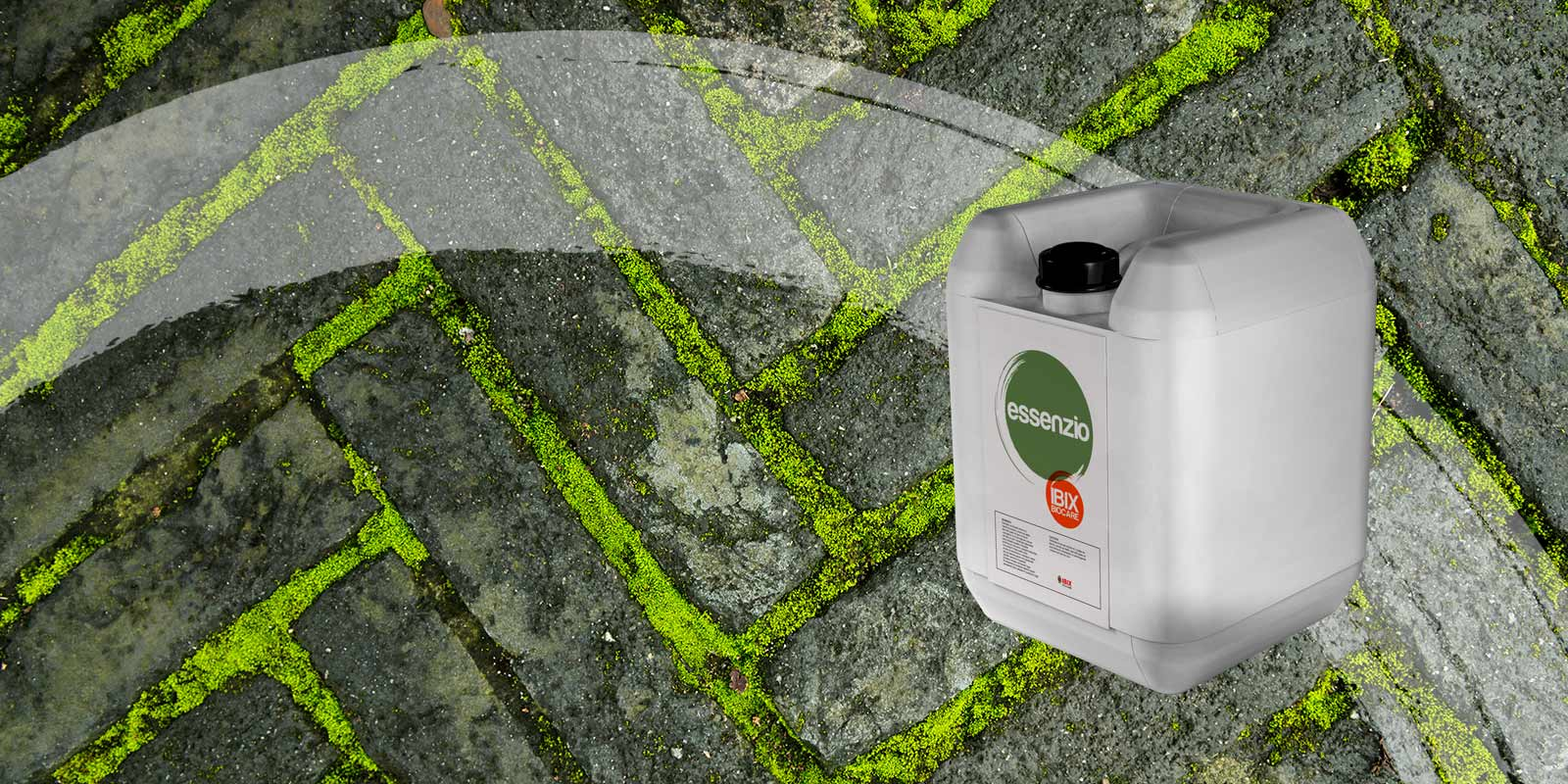 Essenzio is a Eco-friendly and Natural Moss Killer